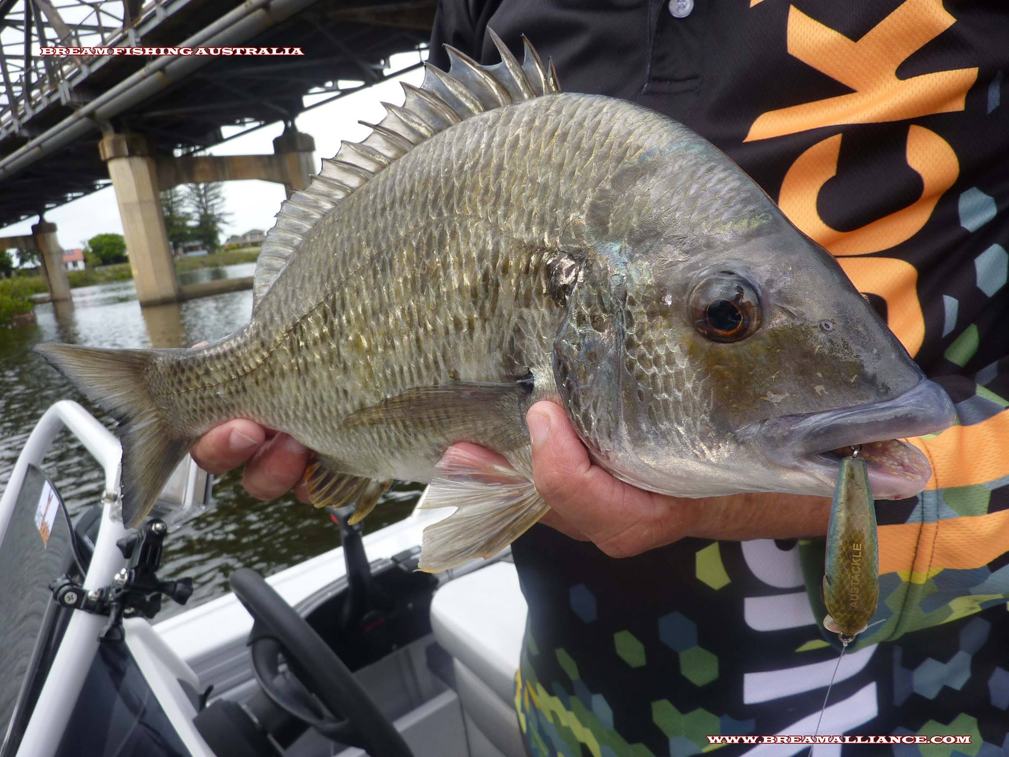 woodhouse bream ranger